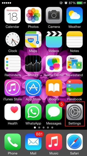 iPhone Main Screen